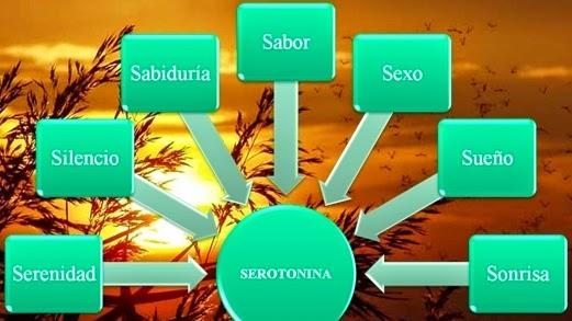 Endorfina serotonina adrenalina e